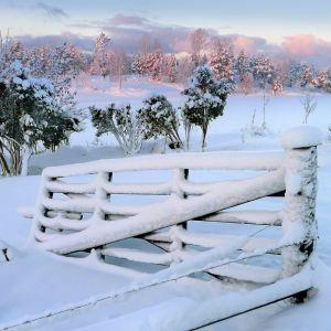 Luminen talvimaisema