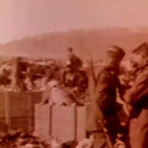 Punaisten hevosia ja rattaita Fellmanin kartanon pellolla 1918.