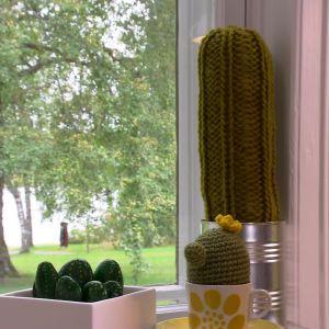 Lees kaktusar av sten och garn