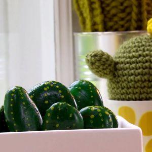 Lees tre kaktusar på fönsterbrädet.