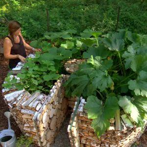 Camilla Forsén-Ström och Owe Salmela vid nyckelhålsträdgården med gurka, pumpa och zucchini