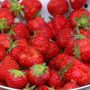 Jordgubbar i en skål