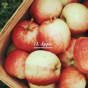 Äpplen i korg.