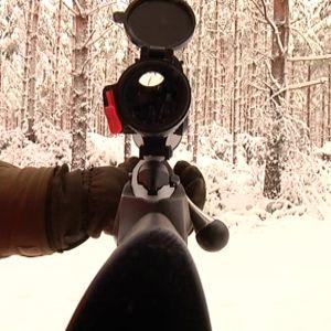 Ett gevär sett ur jägarens perspektiv.