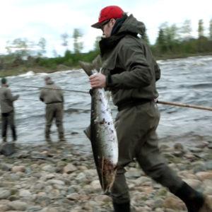 Suomi on tuhansien järvien ja puhtaiden vesireittien maa. Mutta jotain puuttuu.