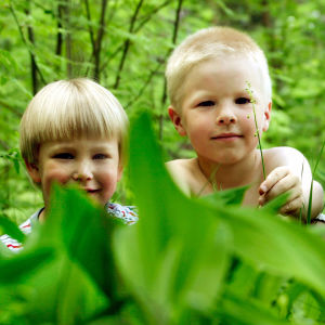 Kolme pientä poikaa leikkimässä metsässä.