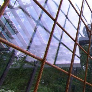 Växthusets fönster skyddas av galler.