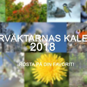 Naturväktarnas kalender 2018, rösta på din favorit!
