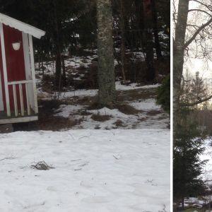 Två bilder på oidentifierad fågel vid röd lekstuga.