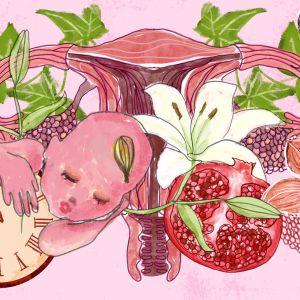 kuvitus, jossa munasarja, vauva, hedelmä, perhonen ja kukka