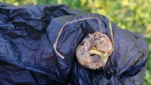 Hundgodis som legat i gräset. Någon håller i den med hjälp av en svart plastpåse.