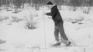 Presidentti Kekkonen hiihtää Lapissa.