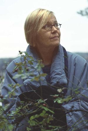 Tua Forsström, 2002