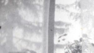 Anni serkkunsa Inkerin kanssa