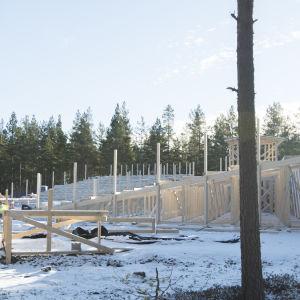 Läktarbygge i Harparskog