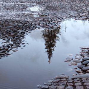 Julgran speglas i vattenpöl
