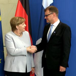 Angela Merkel och Juha Sipilä skakar hand.