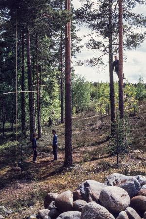 Ihminen puussa ja kaksi maassa puiden keskellä, joista roikkuu kiviä köysien varassa Turppi-ryhmän maataideperformanssissa Lepopaikka Lehtimäessä 1982.