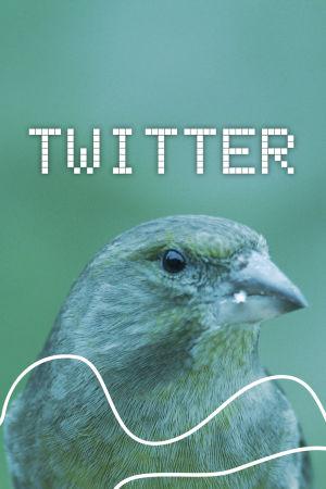 Digitreenien pääkuva, tekstissä lukee Twitter. Taustakuvassa viherpeippo.