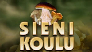 Sienikoulu-ohjelman tunnusgrafiikka
