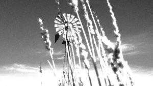 Vanha tuulimylly kuvattuna heinänkorsien välistä