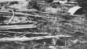 Eine Nyyssösen ja Riitta Pakkasen ruumiit oli haudattu suohon
