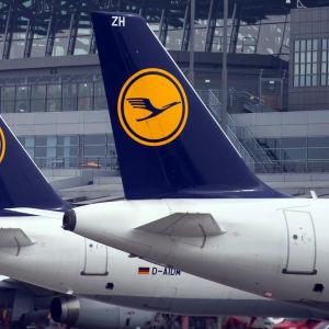 Flygplan tillhörande Lufthansa på flygplatsen i Hamburg den 31 mars 2014