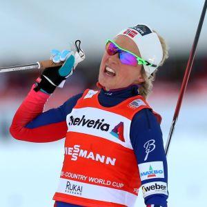 Therese Johaug, Ruka 2014