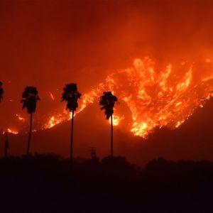 Markbranden flammade upp i Ventura county väster om Los Angeles den 4 december 2017.