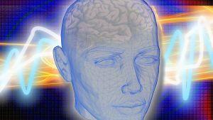En människas huvud.