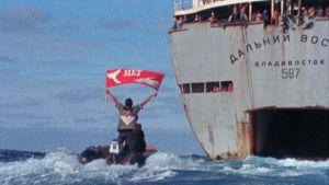 Greenpeace-aktivister försöker stoppa ett ryskt valfångsfartyg