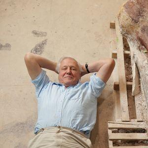 Sir David Attenborough matkasi Patagoniaan seuraamaan jättidinosauruksen tutkimuksia.