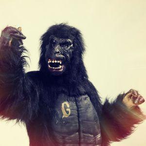 Galaxin gorilla