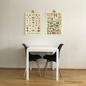 Ett bord, två stolar och en vägg.