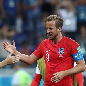 Harry Kane och John Stones firar mål.