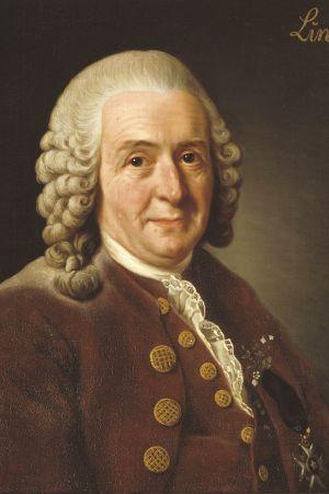 Carl von Linné målad av Alexander Roslin, 1775. Statens porträttsamling Gripsholm