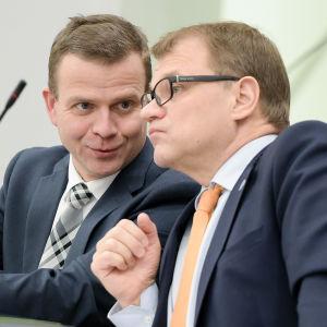 Statsminister Juha Sipilä och finansminister Petteri Orpo i riksdagen
