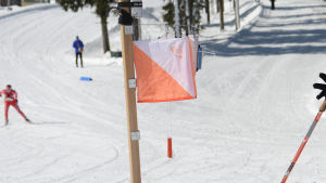 Skidorientering.