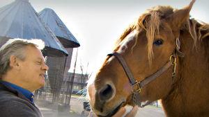 Kiehtova maailma: Todellista hevosvoimaa, martin clunes, yle tv1