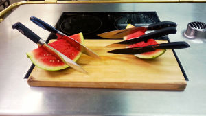 Testiveitset melonissa.