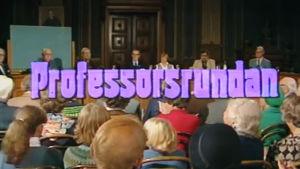 Professorrundan.