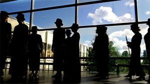 Universitetsdoktorer