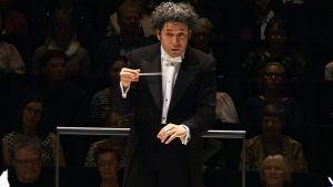Kapellimestari Gustavo Dudamel