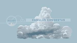 Cumulus congestus -pilvi