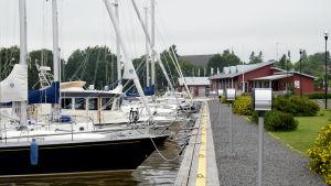 Flera båtar står förtöjda vid en brygga i en hamn. I bakgrunden syns ett rött hus.