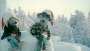 Karvakuonojen joulujakso 1978.