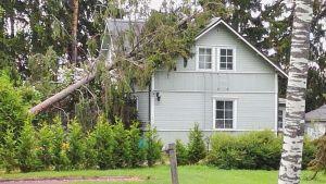 Omkullfallet träd över ett hus.