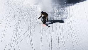 Arctic Lights - Antti Autin tarina