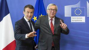 Presidentti Macron puhuu Euroopan parlamentissa