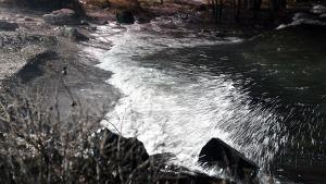 Aku-myrsky huuhtoo vettä rantaan Lauttasaaressa Helsingissä.